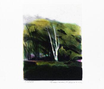 Konstnär Gunnar Larson. Konstverk benämning GL2 'Österlensvit 2', litografi, pappersmått: 28x32,5 cm, bildmått: 16x19,5 cm, upplaga 295. Våga Se - Konst
