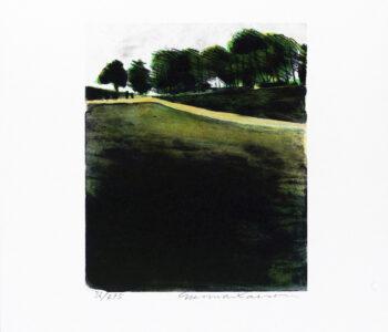 Konstnär Gunnar Larson. Konstverk benämning GL4 'Österlensvit 4', litografi, pappersmått: 28x32,5 cm, bildmått: 16x19,5 cm, upplaga 295. Våga Se - Konst.