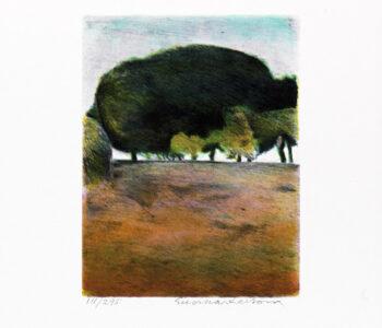 Konstnär Gunnar Larson. Konstverk benämning GL1 'Österlensvit', litografi, pappersmått: 28x32,5 cm, bildmått: 16x19,5 cm, upplaga 295. Våga Se - Konst