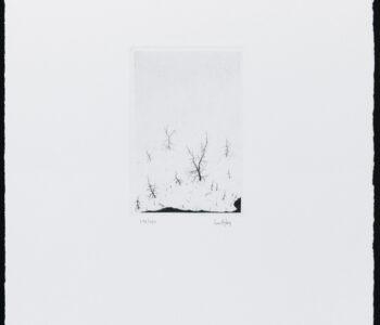 Konstnär Lars Nyberg. Konstverk benämning LANY2 'Utan titel 2', torrnålsgravyr, pappersmått: 25,5x34 cm, bildmått: 9x10 cm, upplaga 295. Våga Se - Konst