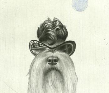 Konstnär Laggar Jan Tigerstrand. Konstverk benämning LJT2 'Raggar-Signe', akvarellerad torrnålsgravyr, pappersmått: 29x38 cm, bildmått: 21x29,5 cm, 250 ex. Våga Se - Konst