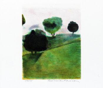 Konstnär Gunnar Larson. Konstverk benämning GL3 'Österlensvit 3', litografi, pappersmått: 28x32,5 cm, bildmått: 16x19,5 cm, upplaga 295. Våga Se - Konst